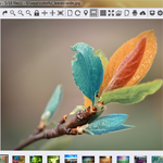ImageGlass 2.0.1.5 - Software view photos with attractive features for PC