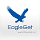 EagleGet 2.0.4.4 - Accelerate downloads and video files