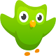 Duolingo for Android - Learning English for free on Android